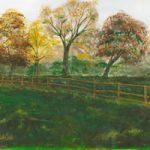 Art Prints – Shamrocks Field