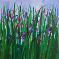 Flowers Prints – Purple Irises – Shepperton Artist Derek Cooke