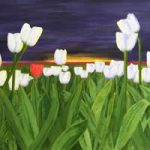 Tulips at Dawn – Fine Art Prints for Sale – Limited Edition
